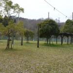 PA広場-写真8